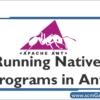 native-programs-in-ant