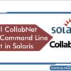 collabnet-svn-command-line