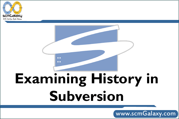 subversion-history-examining