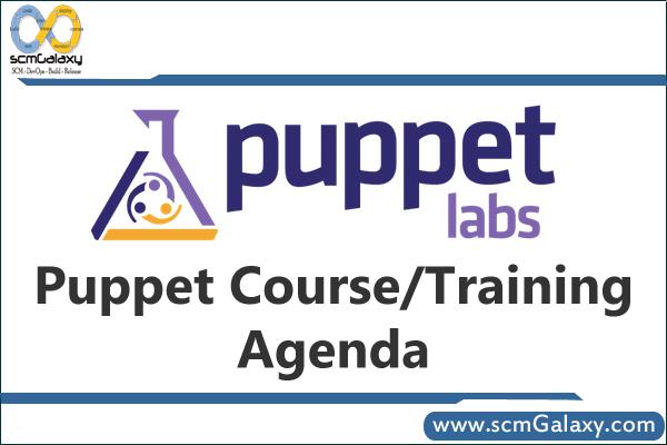 puppet-training