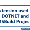 extension-used-in-dotnet-and-msbuild
